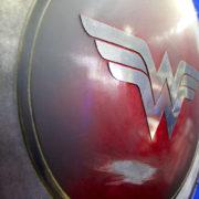 WW Shield close up